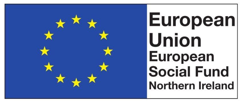 EU white outline